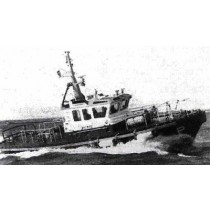 BLUE TOON, Lotsenboot