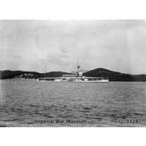 HMS GNAT T 60, britisches Kanonenboot der Insektenklasse, Royal Navy 1915 bis 1945